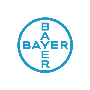 Bayer Logo Grey