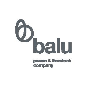 Client Balu